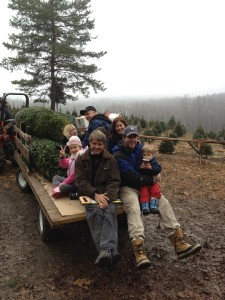 Visitors at Emmerich Tree Farm in Warwick, N.Y. have their freshly cut Christmas trees to bring home and decorate. Thousands of visitors come to Orange County each holiday season to visit nine Christmas tree farms and experience the fun of hand picking and cutting their own special Christmas trees.