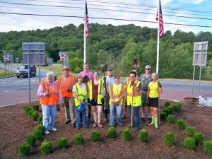 Liberty planting